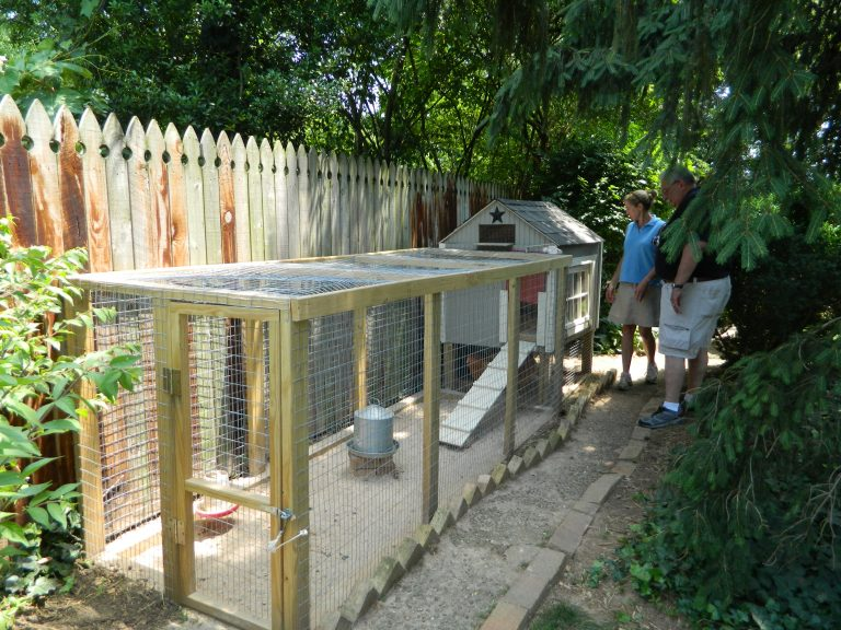 Example of urban poultry house