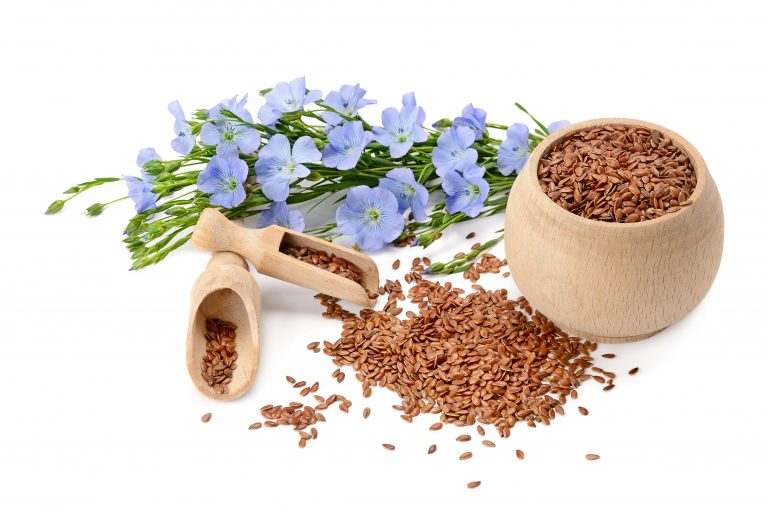 Flaxseed flowers and seeds