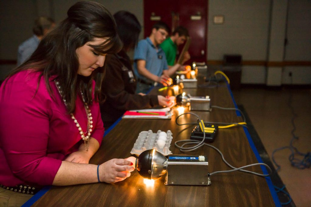 4-Her candling eggs to determine interior quality at the national 4-H poultry and egg conference