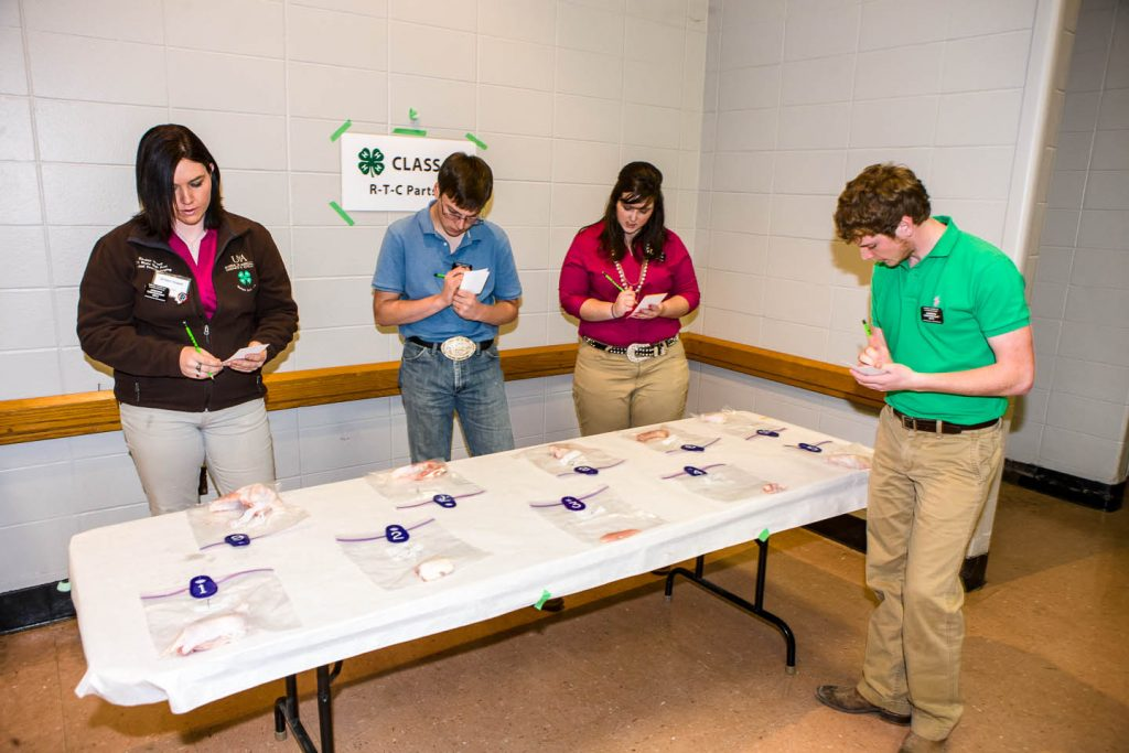 4-Hers identifying chicken parts in the national poutlry judging contest